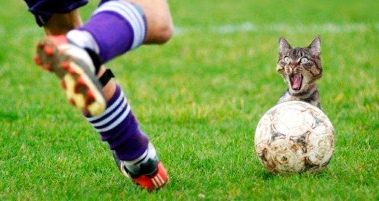 Las anécdotas más divertidas en la historia del fútbol
